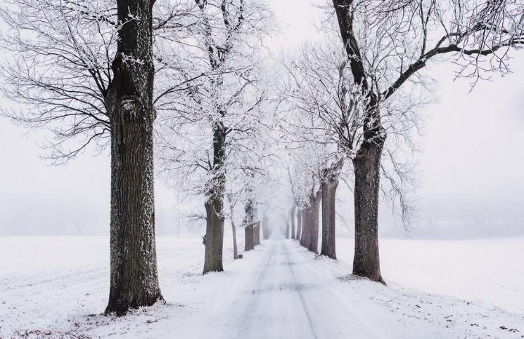 Sneeuwval